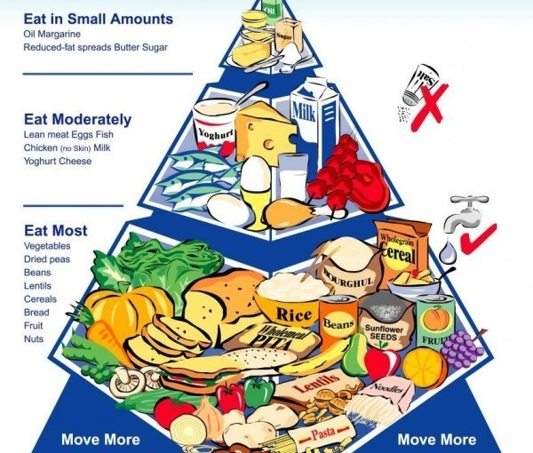 government guidelines for a healthy diet