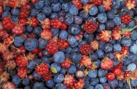 Healthy eating tips - berries