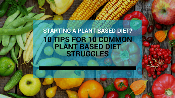 Struggling on a plant based diet? 10 common roadblocks and solutions