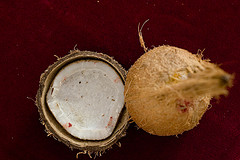 Benefits of coconuts