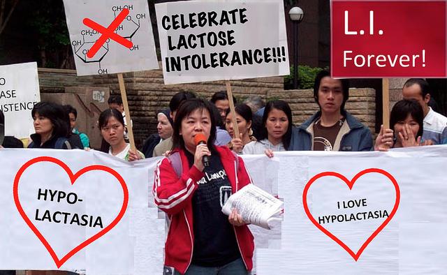 Celebrate lactose intolerance