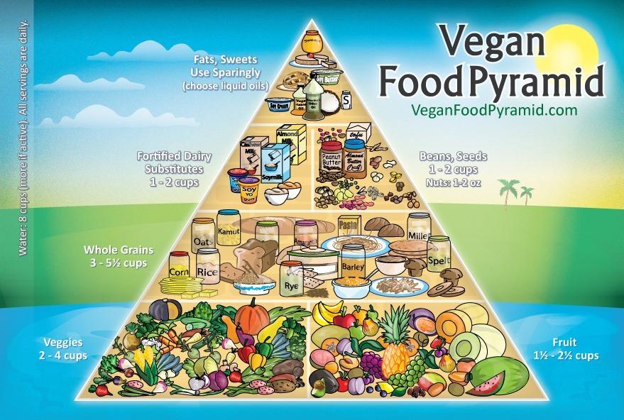Vegan Vegetarian food pyramid