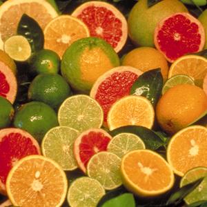 Citrus fruit sugar