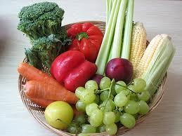 plant based diet benefits