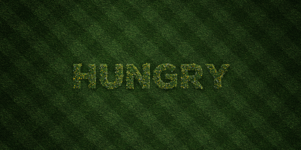 Will I feel hungry while on a plant based diet?